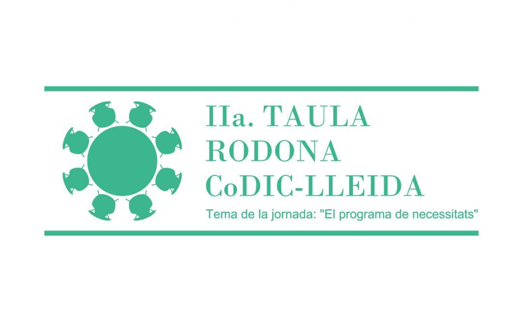 IIa. Taula Rodona del CoDIC-Lleida